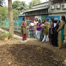 2013 Biocomposting