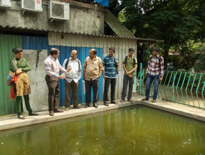 8. 2014, Fish farming