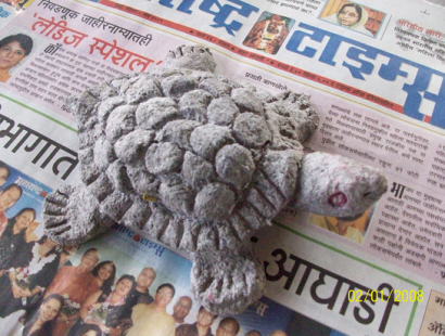 2008 Turtle festival – supported with paper pulp turtle – KAGADSHILPA