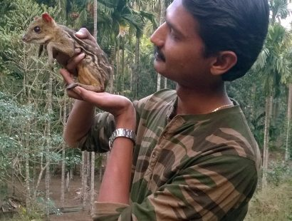 26. Rescued Mouse Deer at Dandeli Naturetrail