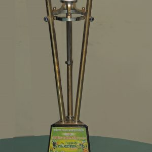 Thane Go Green -2010 Award 2nd prize