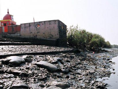 2006 f