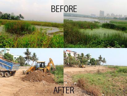 2012 before 2015 after Habitat Destruction