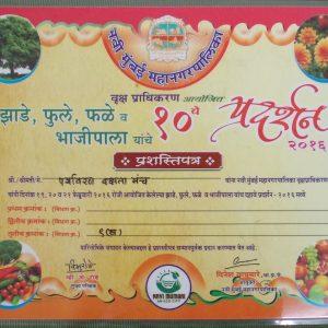 10th Navi Mumbai Mahanagarpalika Vrukshapradhikaran certificate 2016