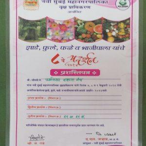 8th Navi Mumbai Mahanagarpalika, Vrukshadhikaran, Certificate (2014)