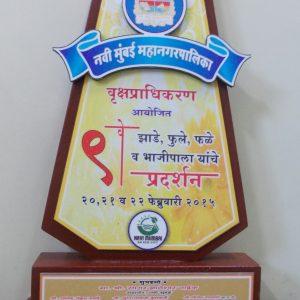 9th Navi Mumbai Mahanagarpalika Vrukshapradhikaran-2015
