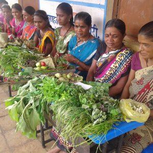 Ranbhajya (1)